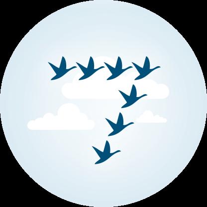 Logo 7Geese