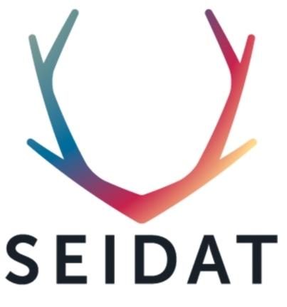Logo Seidat