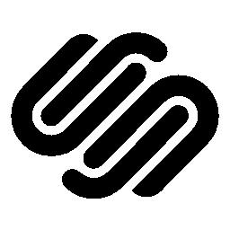 Logo Squarespace